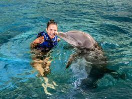 nado-con-delfines-01